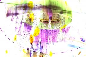 Farbenvielfalt 21