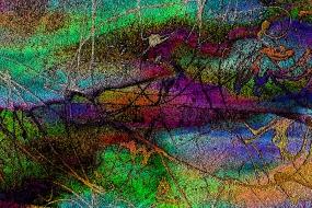 Farbenvielfalt 23