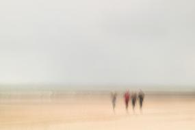 Strandläufer