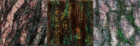 Triptychon - Fotografie und Acryl auf Holz