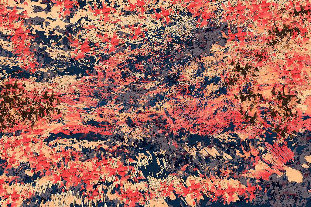 Galerie Farbenvielfalt